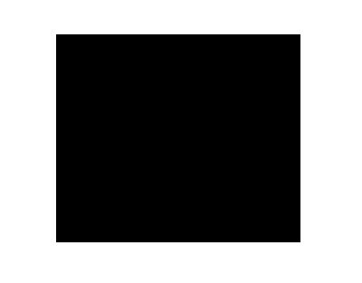 pt logo 2019